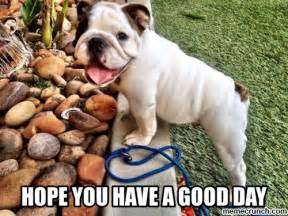 Have A Good Day Meme - hope you have a good day