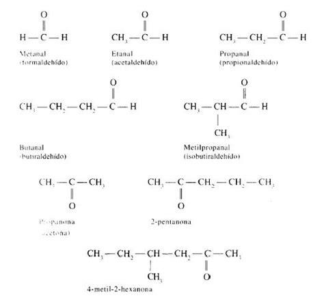 cadenas alifaticas que es nociones generales de la qu 237 mica org 225 nica p 225 gina 2