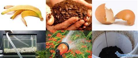 Pupuk Kalsium Alami tanaman dengan pupuk organik buatan sendiri