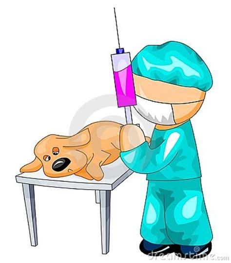 chlorhenicol for dogs vet injection