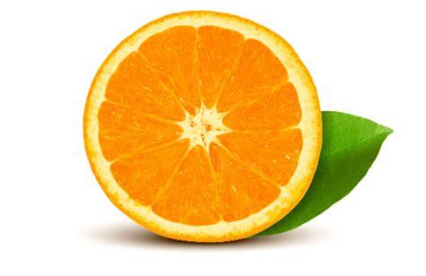 illustrator tutorial realistic orange 30 new adobe illustrator tutorials tutorials design blog