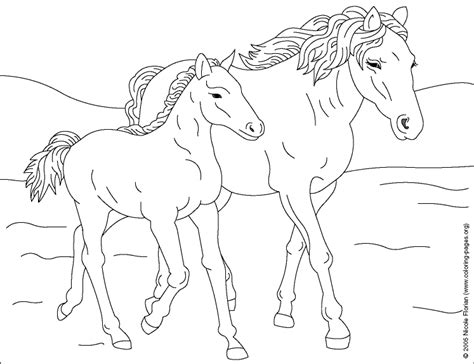 herd of horses coloring pages coloriage cheval les beaux dessins de animaux 224 imprimer