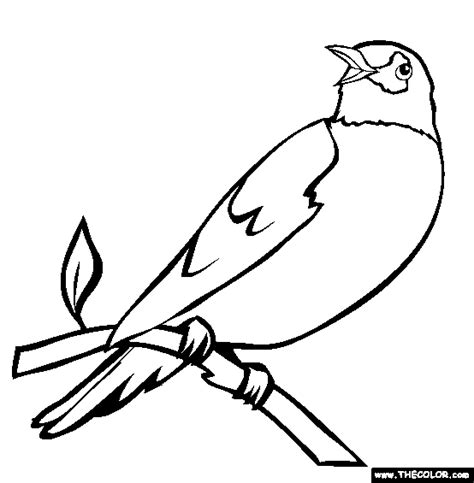 bird pictures to color bird coloring pages page 1