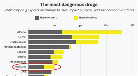 What Is The Most Dangerous To Detox From by Most Dangerous Drugs May 15 Infographic Oregon Cannabis