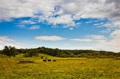illinois landscape this was taken up at lena il last week troymarcyphotography com flickr
