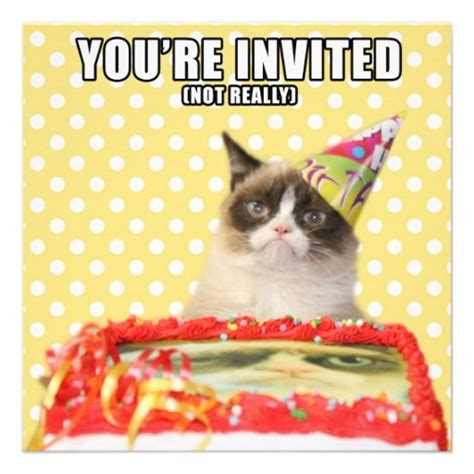 grumpy cat party ideas one charming party birthday grumpy cat invitations you re invited cats grumpy cat