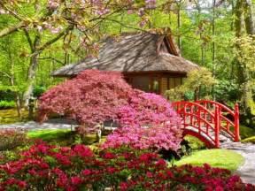 Japanese Garden Flowers Japanese Garden Flowers Nature Background Wallpapers On Desktop Nexus Image 1717753