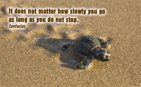 Does It Stop by It Does Not Matter How Slowly You Go So As You Do Not