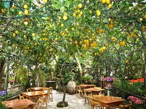 best restaurants in sorrento italy 25 best ideas about sorrento on sorrento