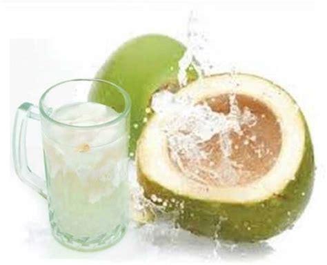 cara membuat minyak dari air kelapa manfaat air kelapa hijau muda untuk kesehatan tubuh