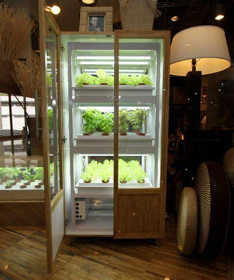 grow   veggiesin  cabinet   soil