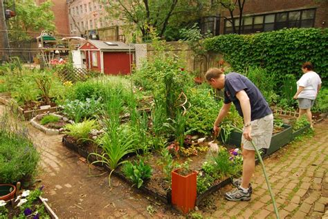 history of vegetable gardening tales of gardening greatness community gardens nyc parks