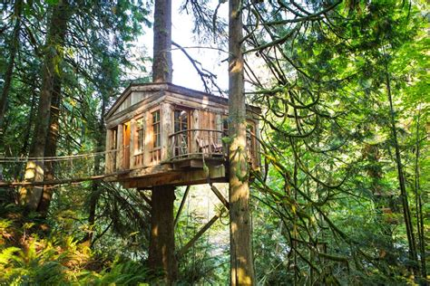 treehouse house the 10 coolest homes in the treetops brit co