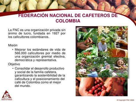 caf 233 organico