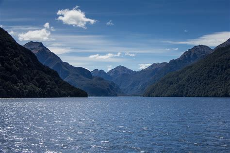 doubtful sound boat trip doubtful sound with real journeys nz cooking in tongues