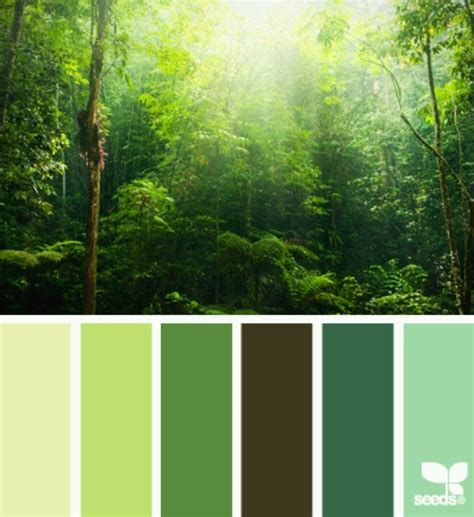 green color schemes forest greens color inspiration
