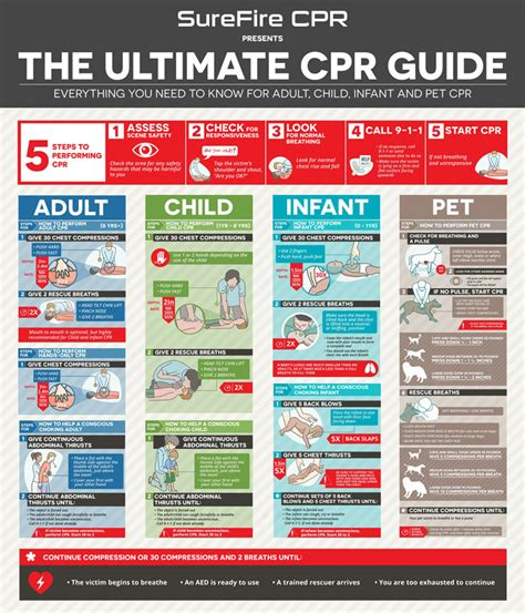 printable cpr instructions 2015 the ultimate cpr guide infographic best infographics