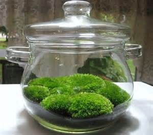 10 masterpieces of art created using moss green diary green revolution guide by dr prem