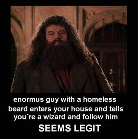 Hagrid Meme - harry potter hagrid is totally legit demotivational