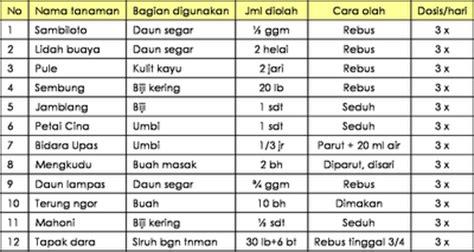 lengkap daftar tanaman obat indonesia khasiatnya