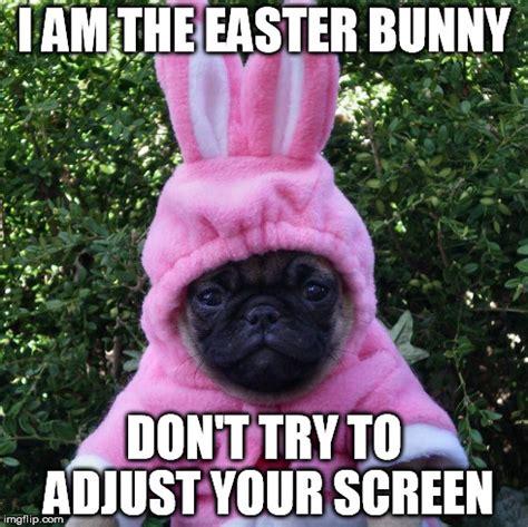 Easter Bunny Meme - creepy easter bunny imgflip