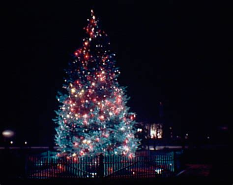 images of electric christmas tree lights best christmas