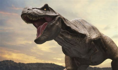 Pictures Of Real Dinosaurs