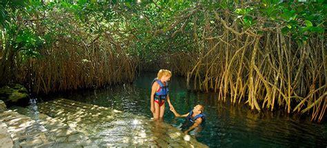 entrada xenses quintanarroenses manglares parque xel h 225 canc 250 n