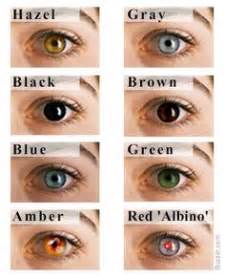 different types of eye colors 1000 images about and iridology on