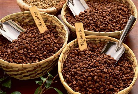 Types of coffee   types.coffee