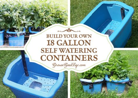 self watering container garden build your own 18 gallon self watering containers