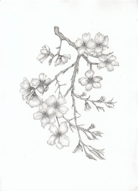 flower branch tattoos designs almond blossom branch tats almonds