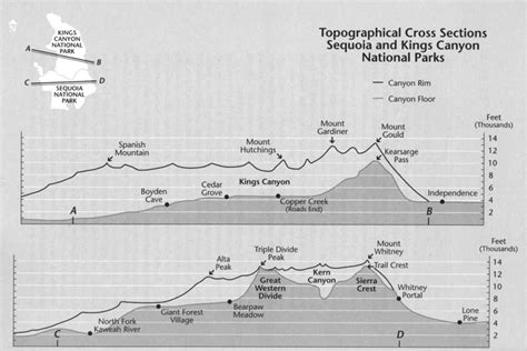 topographic cross section challenge of the big trees table of contents