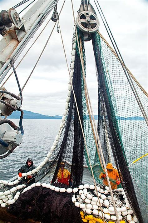 work on a fishing boat alaska what it s like to work on a commercial fishing boat in