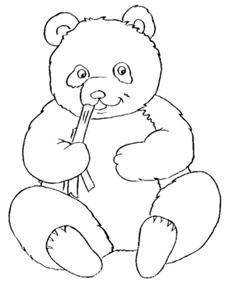 cute wild animals coloring pages cute coloring pages of animals coloring home