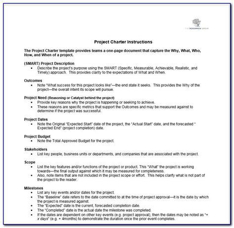 profit organization charter template