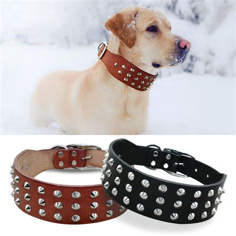 cool rivets studded best genuine leather pet collars