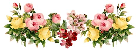 format gambar png gambar floral png transparent images pluspng picture