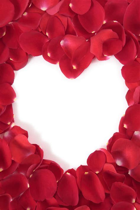 cornici a forma di cuore cornice a forma di cuore con petali di rosse