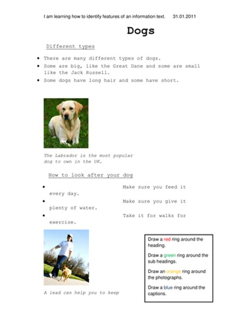 simple biography ks2 information text feature activity by star17 teaching