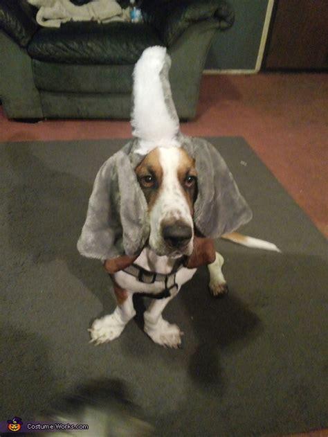 elephant costume  dogs