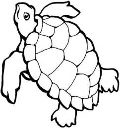 turtles outline black and white outline of turtle pictures to pin on