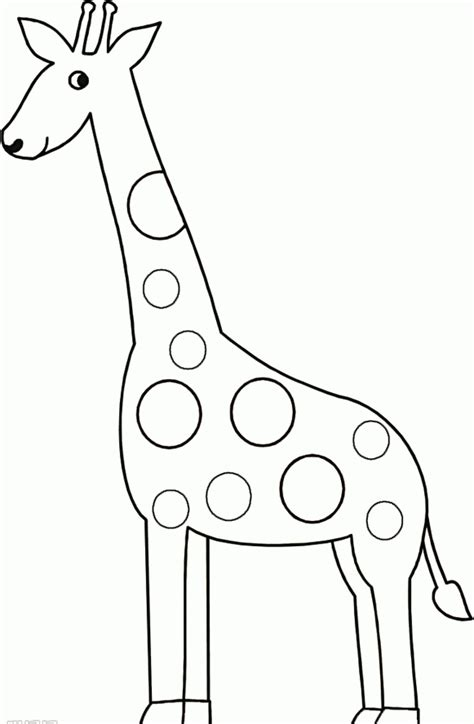 best photos of giraffe template for preschool giraffe