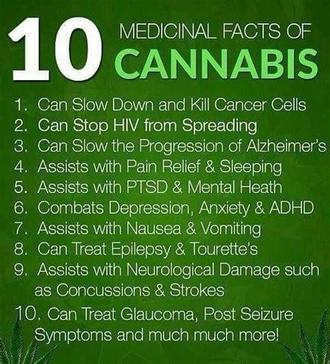 10 medical facts of cannabis weed