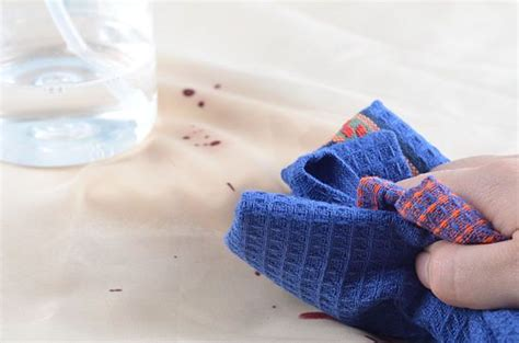 removing blood stains from couch remove dried blood stains from a couch stains the o