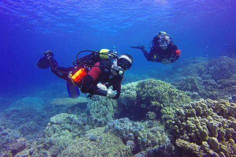 plymouth diving open water diver recreational diving indeep dive