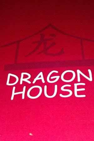 dragon house east far east inspired wall art picture of dragon house jaipur tripadvisor