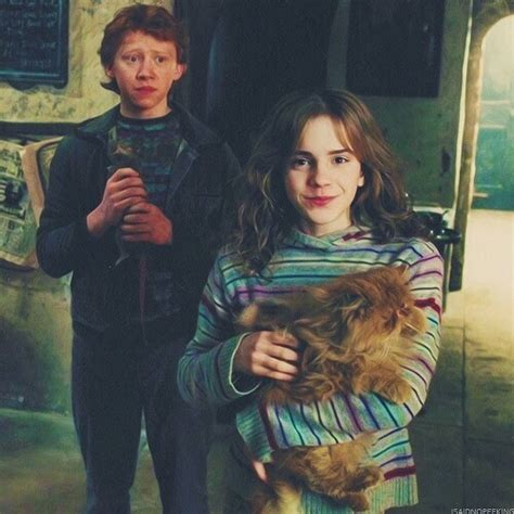 Chat D Hermione Granger by Chat Harry Potter Hermione Granger Weasley Image