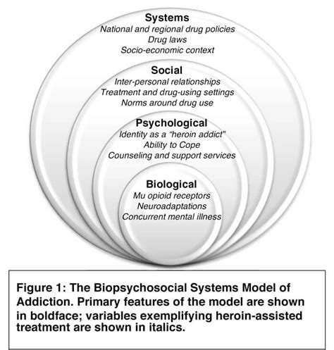 Social Model Detox And Mainecare by Defining Addiction Intersections Of Mental Health