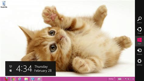 cute kitten themes for windows 7 cute cat themes for windows 7 free download fernmetpaten